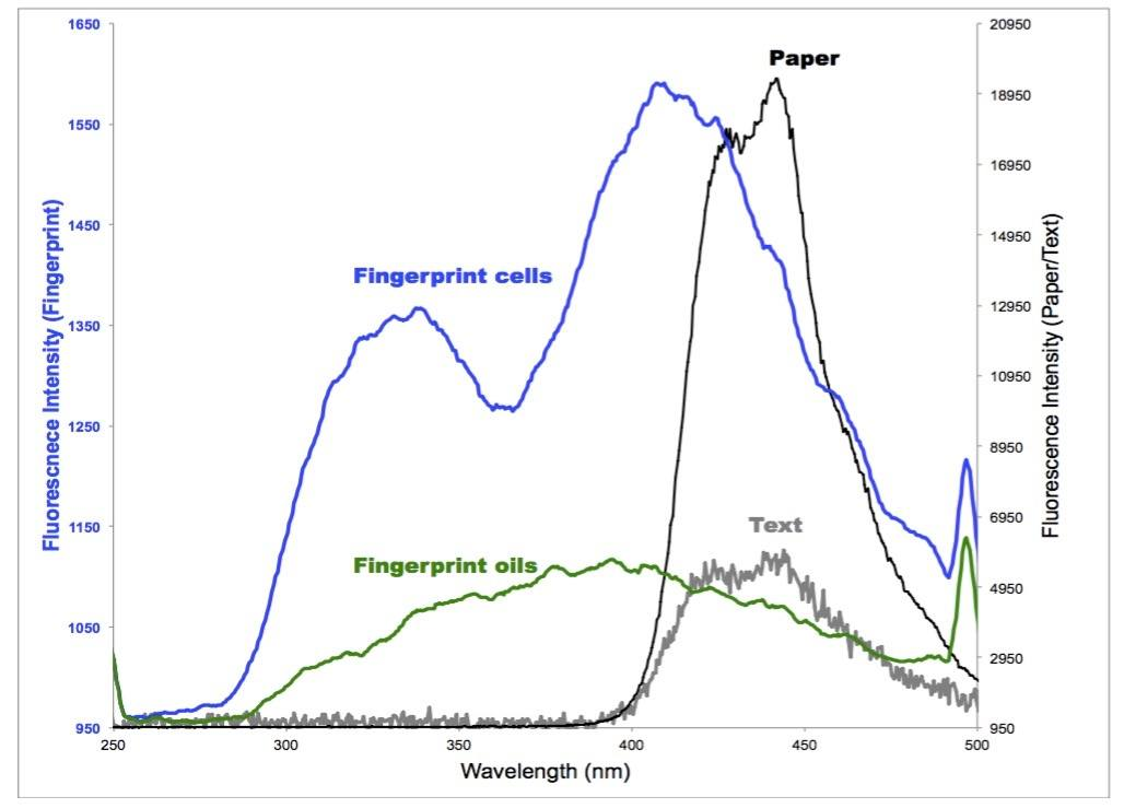 Fluorescence spectra of fingerprints and paper background