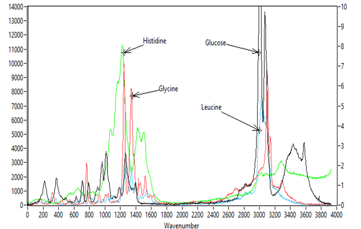 UV Raman Spectra of Histidine, Glycine, Glucose and Leucine, 248nm Excitation